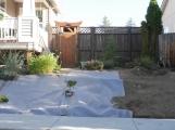 Prepping yard